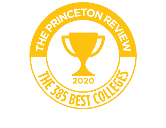 The Princeton Review 381 Best Colleges badge