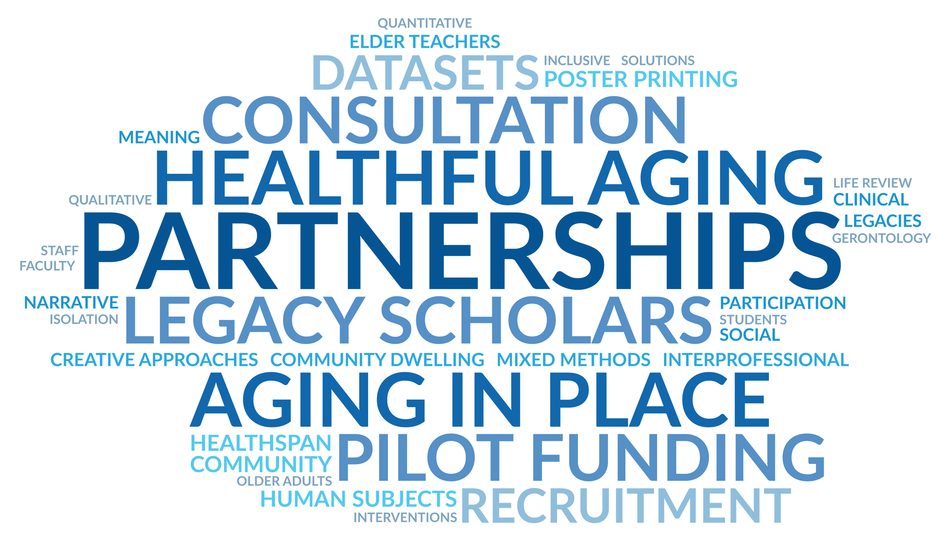 Center for Excellence in Aging and Health Resources word cloud
