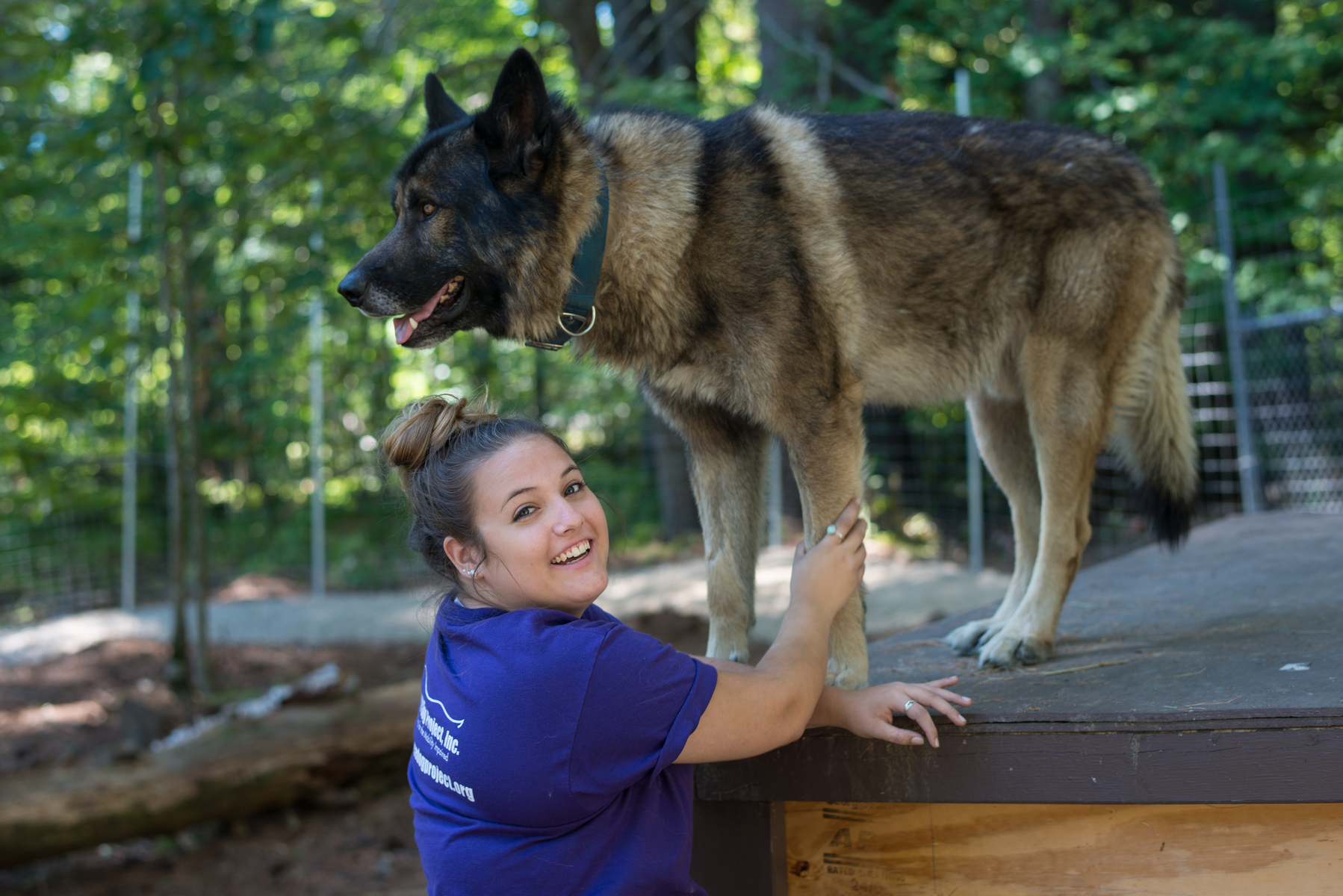 Animal behavior student with wolf