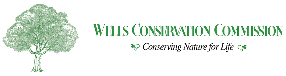 wells conservation commission