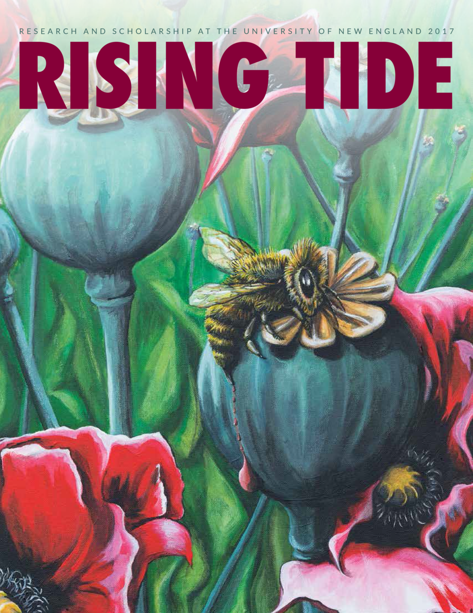 Cover of 2017 issue of Rising tide