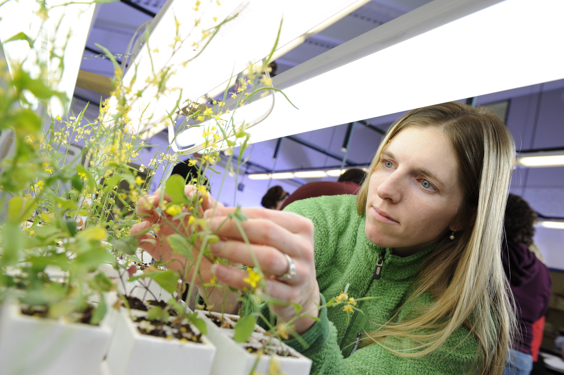 A female student collects research data from a plant
