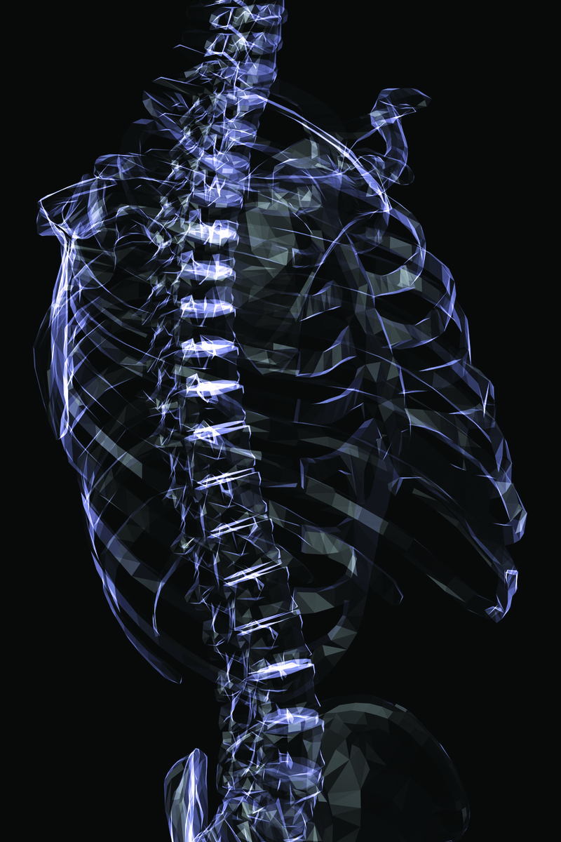 A computer rendering of a human skeleton