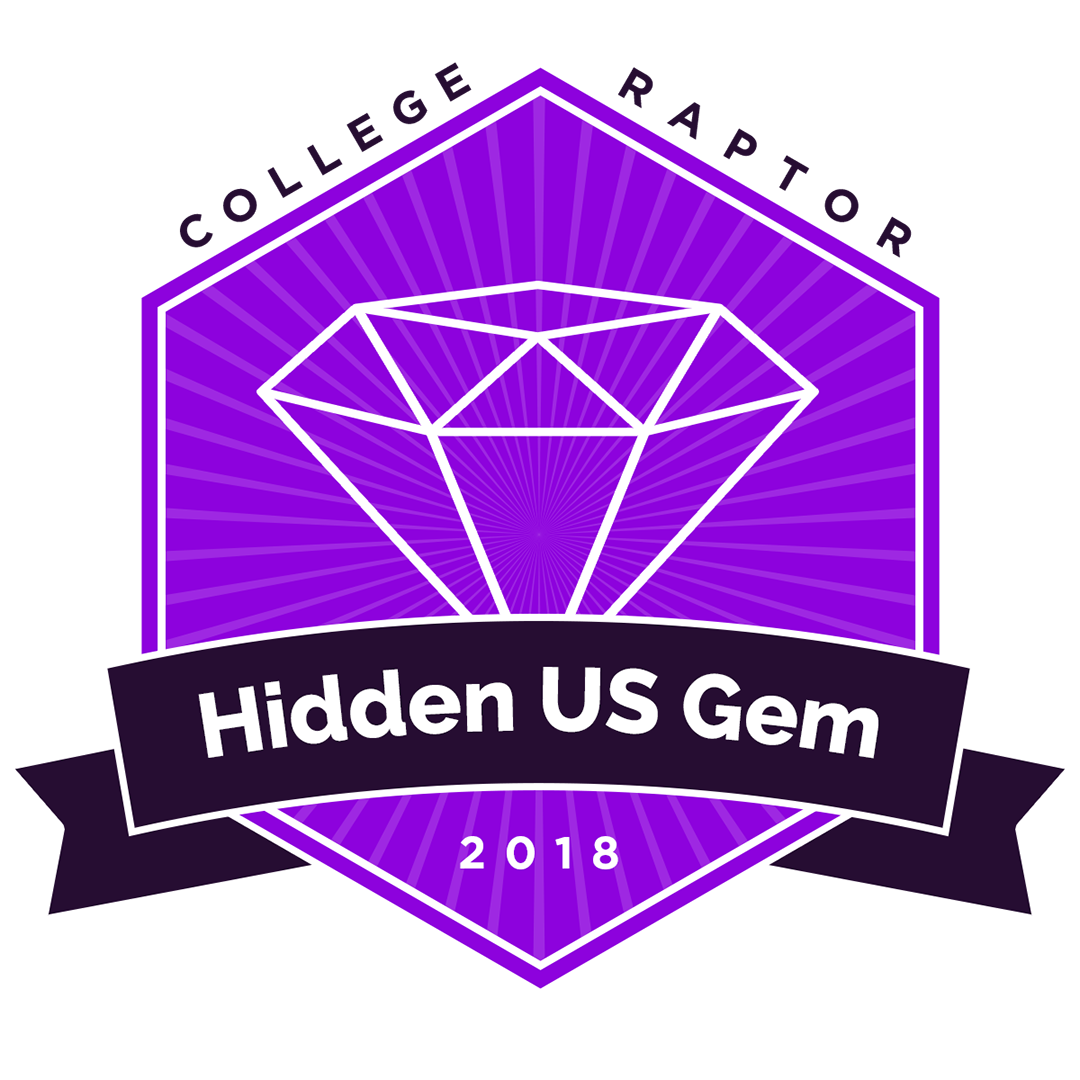 hidden gem badge 2018