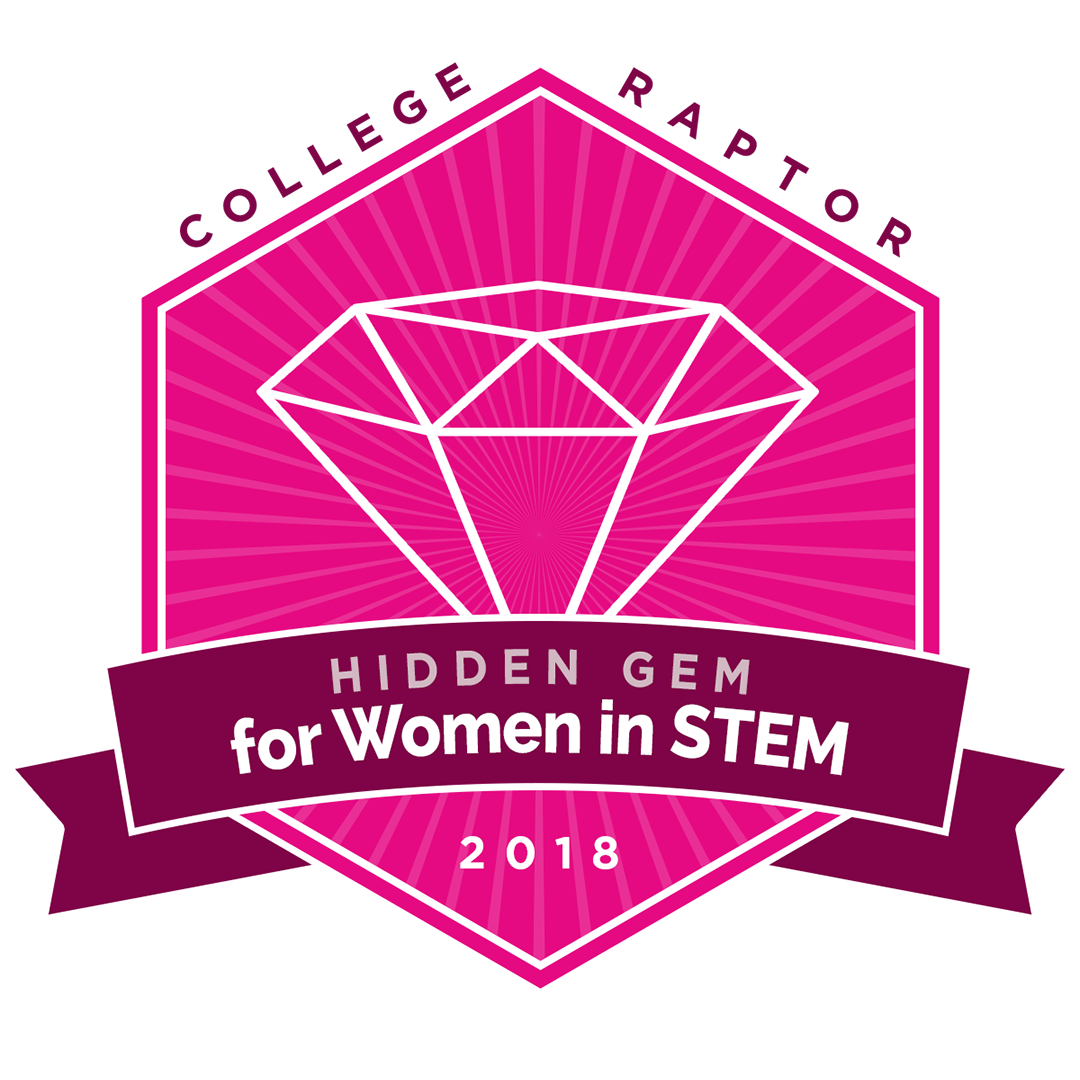 hidden gem badge for women in STEM 2018