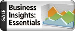 Business Insights Essentials 2