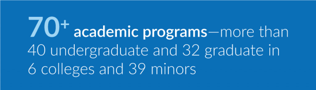 U N E has more than 70 academic programs, more than 40 undergraduate and 32 graduate in 6 colleges and 39 minors