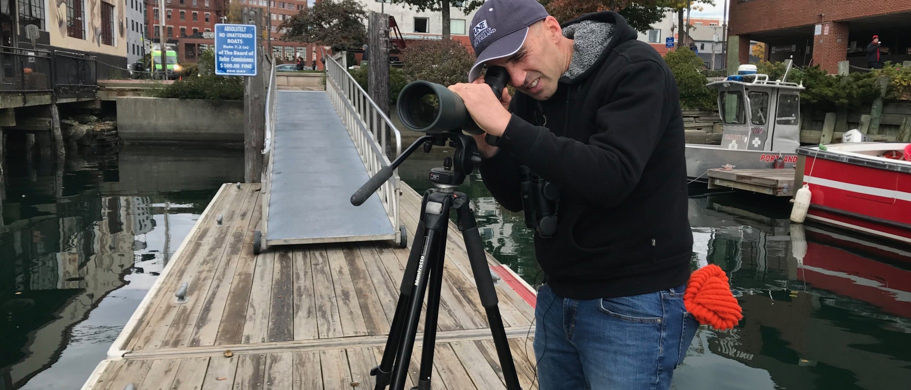 Noah Perlut looks for gulls along the waterfront in Portland