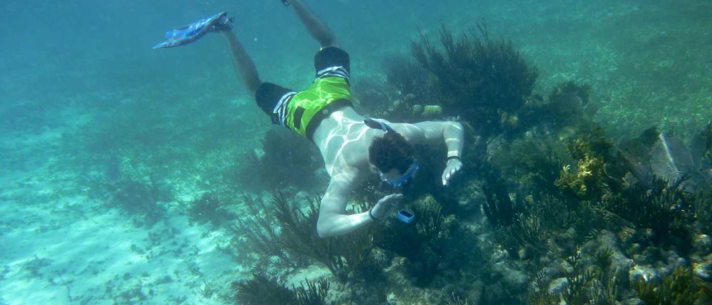 Snorkeling in Belize 2019