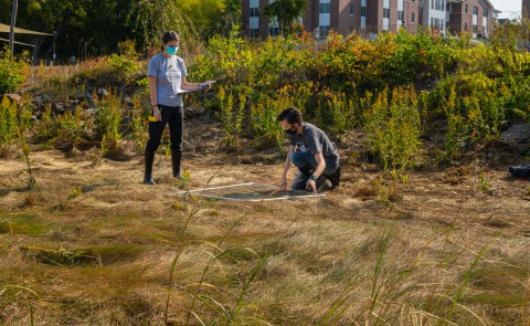 "Students in Pam Morgan's Gulf of Maine Field Studies course spent their semester researching the feasibility of creating one or more ""living shorelines"" along UNE's Biddeford Campus."