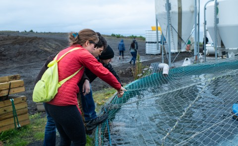 UNE NORTH Professional Science Master's students explore an Arctic char farm in Iceland