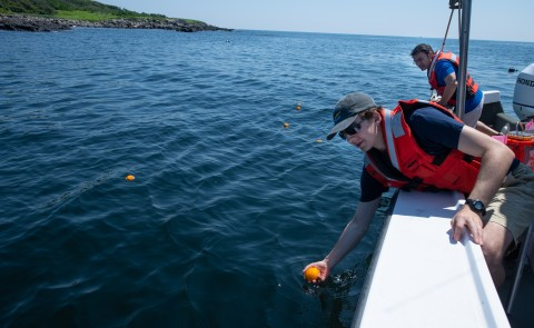 Andy Robinson (M.S. Marine Sciences, '21) places oranges in the water in Biddeford Pool to track surface current movements.